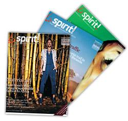 'Spirit' van Brussels Airlines